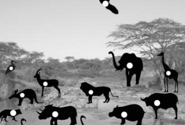 Afrika 2 Wasserstelle