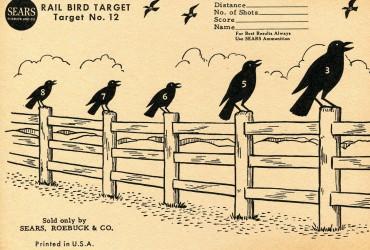 Bird Rail Target