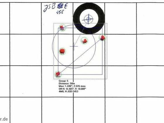 Munitionstest, FWB300S, 50m, JSB E453, 27.07.2012 (3)