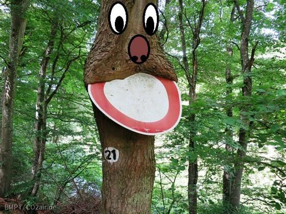 Wo die Bäume Schilder fressen...