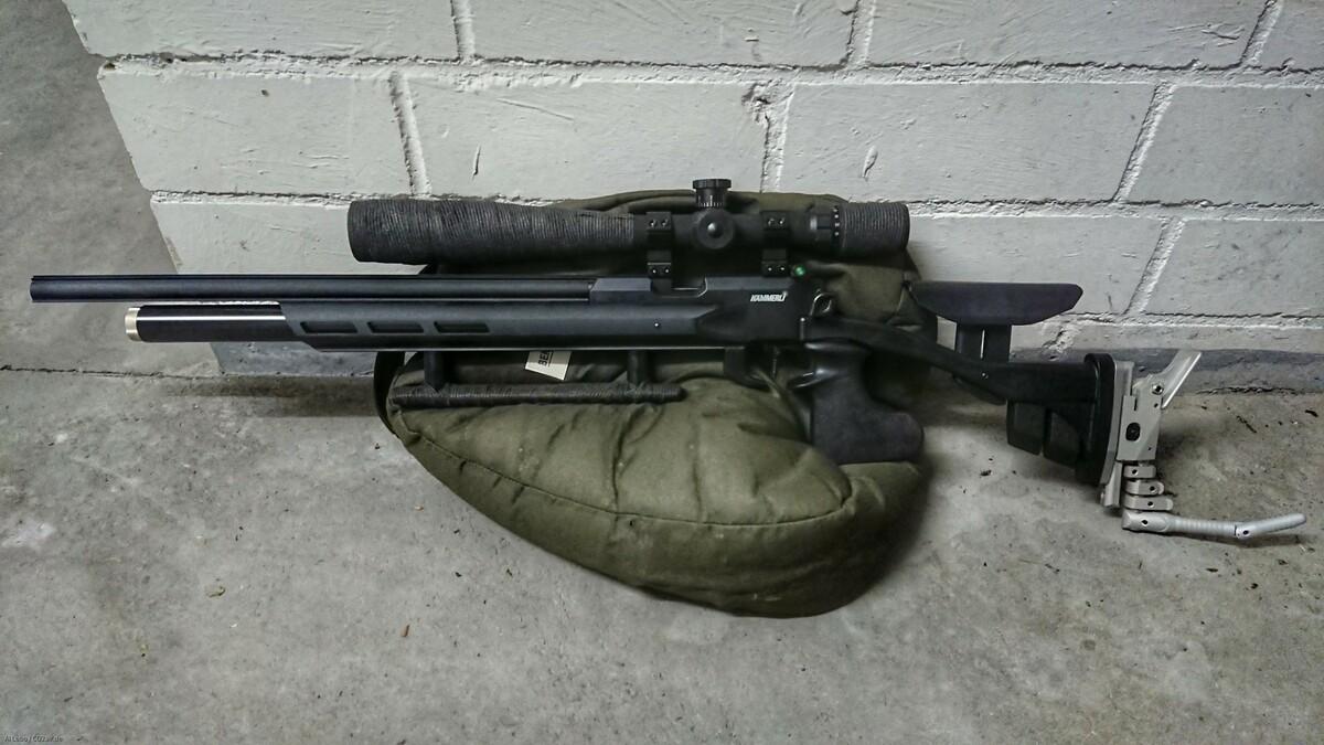 AR20 Hunter