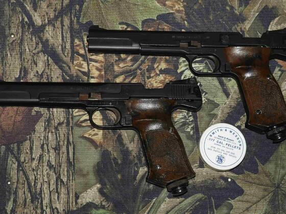 S&W 78G & 79G