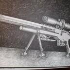 Entwurf Luftgewehr