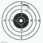 Streukreis 5 Schuss, 10m, 303-8 Super