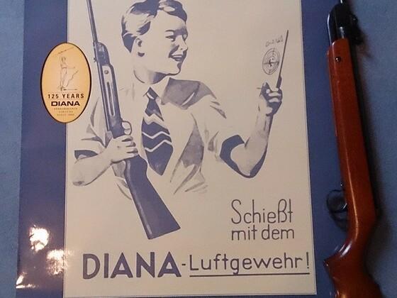 Diana Mod 24